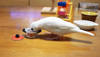 文鳥のおすすめの餌